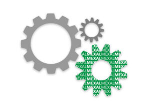Software Gestionale Mexal